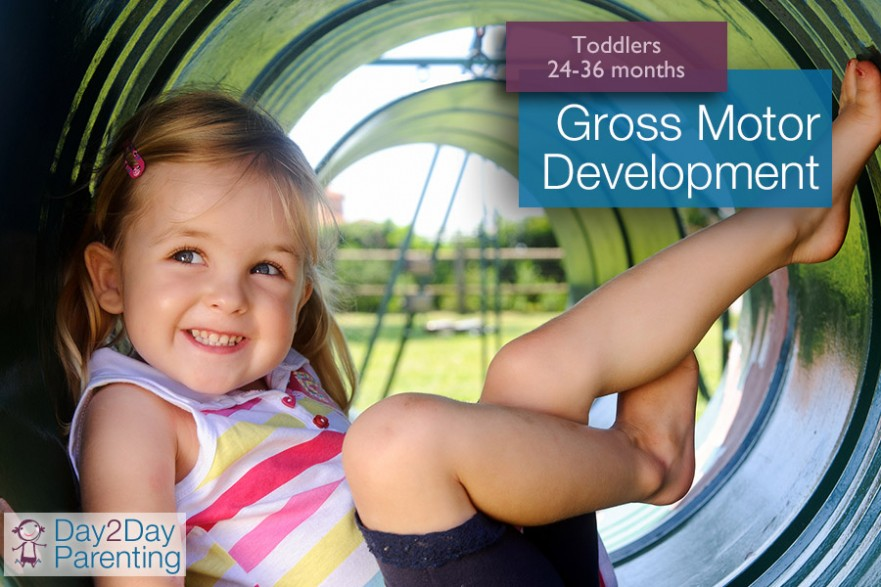 Gross Motor Activities For Toddlers 24 36 Months