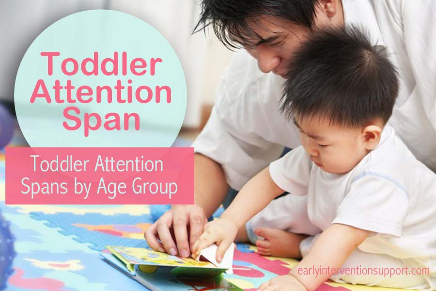 toddler attention span