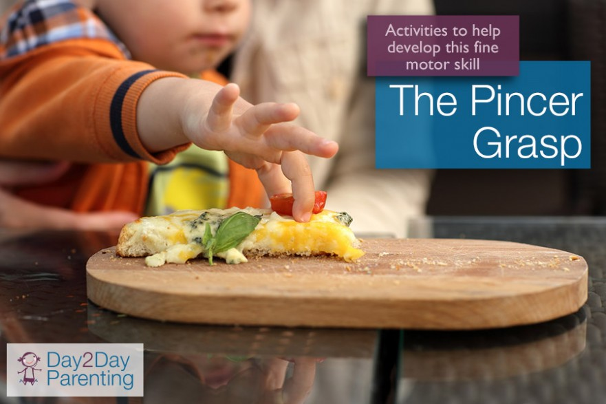 Fine Pincer Grasp Www Pixshark Com Images Galleries