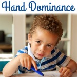 The Development of Hand Dominance