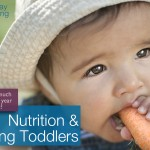 Toddler Nutrition: Just How Much Should a Young Toddler Eat?