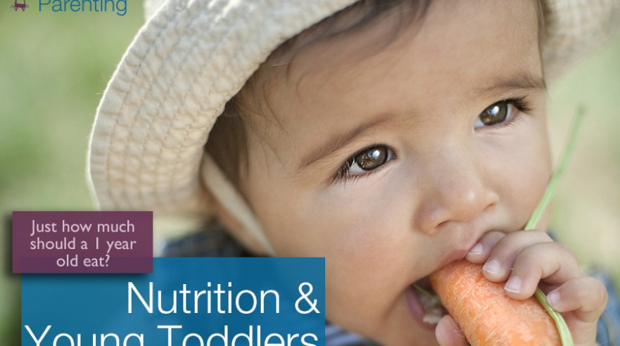 Toddler Nutrition - Day 2 Day Parenting